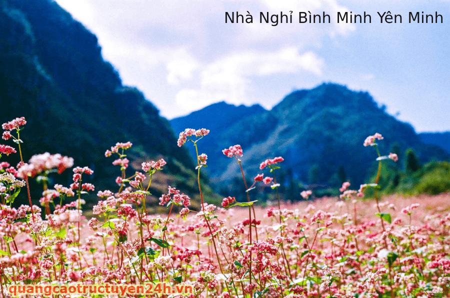 Nhà Nghỉ Bình Minh Yên Minh