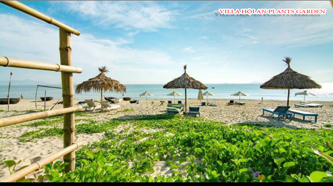 Nhìn ra biển An Bằng