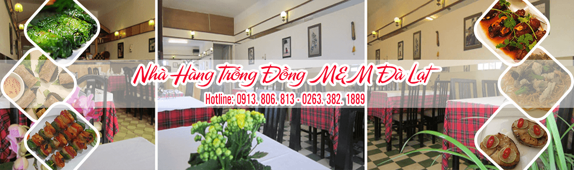 banner-trong-dong-mm