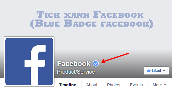 Blue Badge facebook