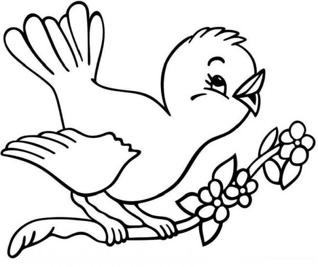 Hình tô màu động vật cho bé - 04