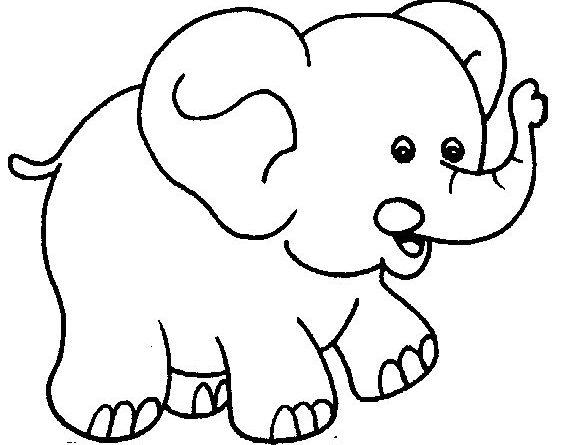 Hình tô màu động vật cho bé - 05